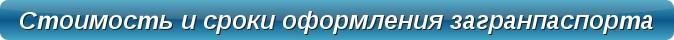 Оформление загранпаспорта Срочное оформление загранпаспорта, биометрический загранпаспорт